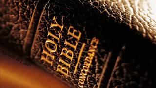 سفر التكوين كاملا