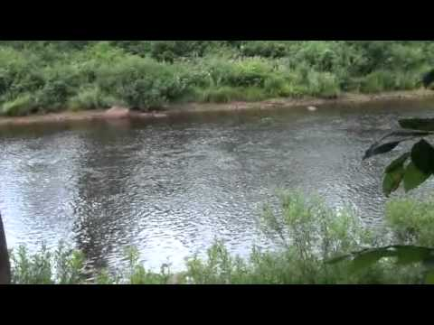 New York Fishing Land For Sale West Canada Creek Trout Water With Sound