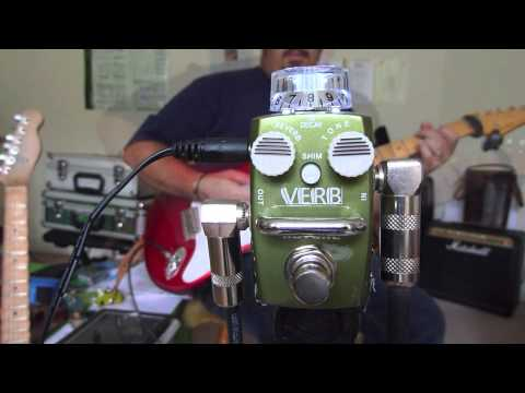 "HOTONE Verb ""Digital Reverb"" Skyline Mini Pedal True Bypass Review"