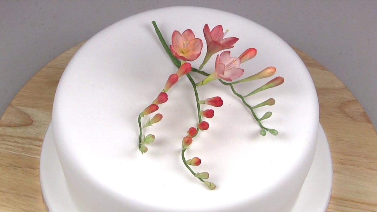 Sugar Paste Cake Decorating How To Make A Freesia Youtube