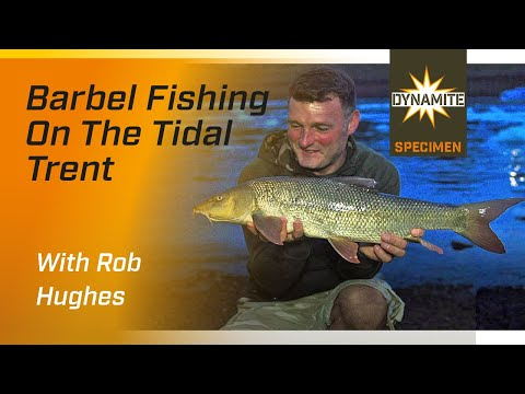 Barbel Fishing On The River Trent With Rob Hughes