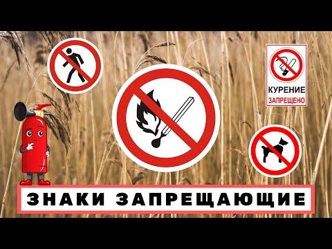 Знаки Указатели Запрещающие! Проход запрещен! Курение запрещено! С собакой нельзя! Огонь запрещен!