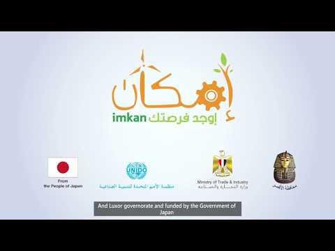 UNIDO's entrepreneurship ecosystem model in Egypt