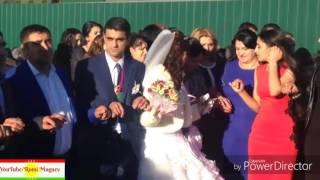 Курдская Езидская свадьба Ярославль Kurdish Ezedy wedding