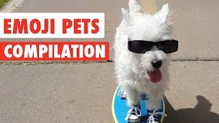 Repeat youtube video Emoji Pets Video Compilation 2017