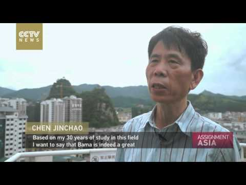 assignment-asia:-china's-secret-to-long-life?
