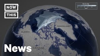 Alarming Map Shows Sea Ice Melting Since 1984 | NowThis