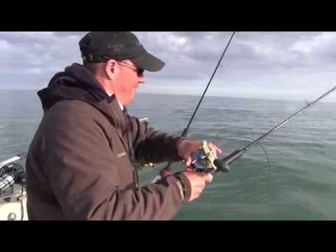 Lake Ontario Brown Trout Fishing