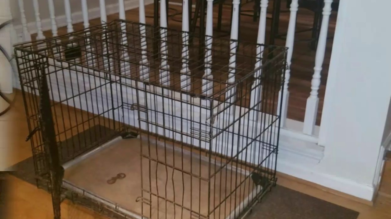 DIY - I hated the look of the big dog crate in my living ...
