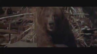 О кино - Медведь Барт