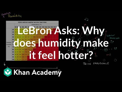 LeBron Asks:  Why does humidity make it feel hotter?