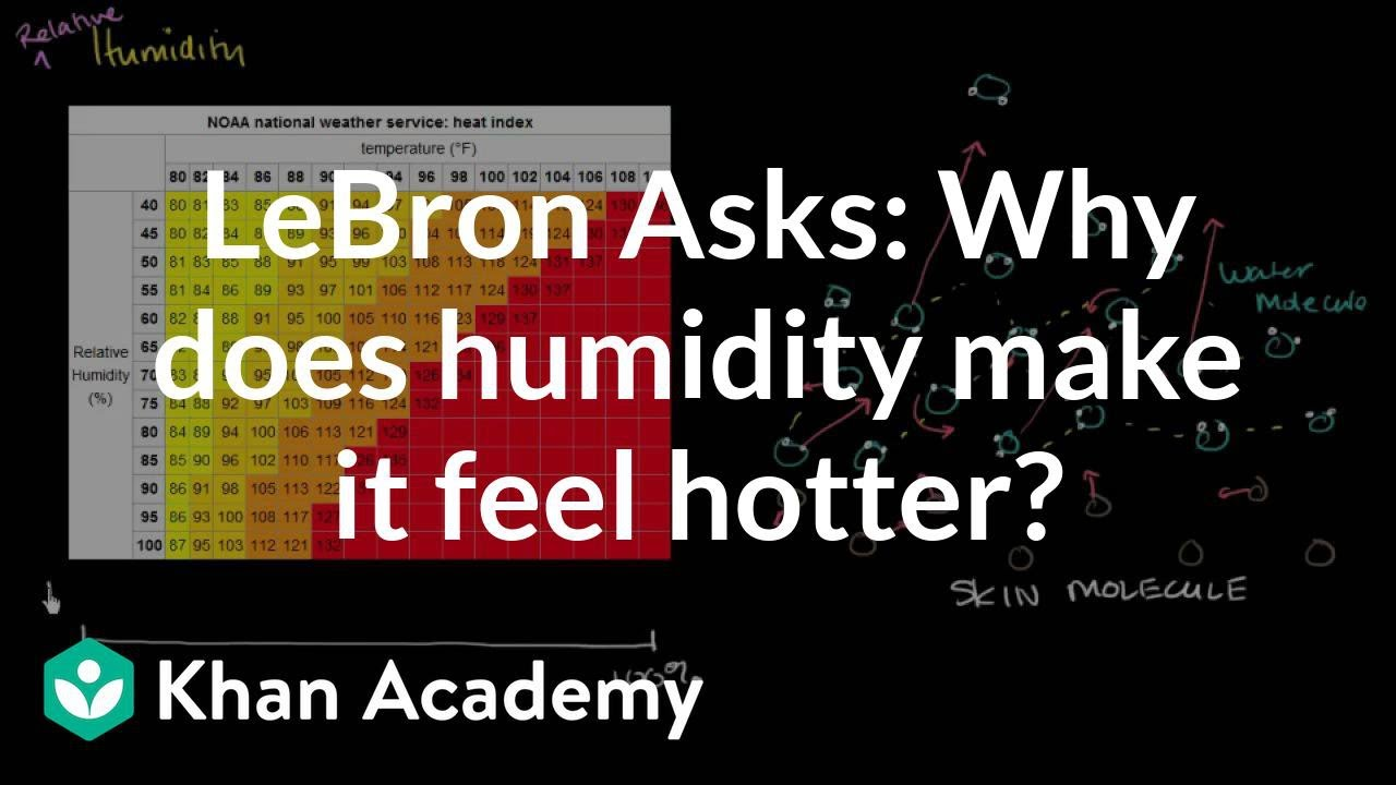 LeBron Asks: Why does humidity make it feel hotter? (video