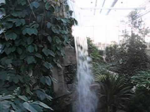 Greenhouse at RHS Garden Wisley