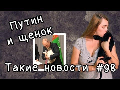 Путин и щенок