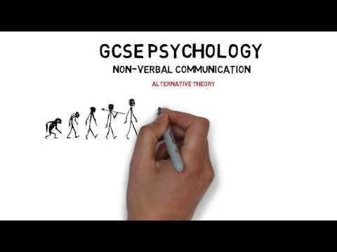 GCSE Psychology Non-verbal Communication Alternative Theory