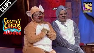 Real Life Tom & Jerry   Comedy Circus Ke Ajoobe