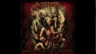 Incineration-Babykiller(Devourment Cover)