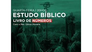VISÃO PANORÂMICA DA BÍBLIA – NÚMEROS (1 a 36)