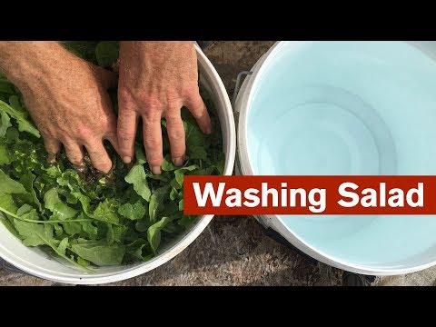 A Simple Setup for Washing Salad