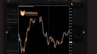 Direct Signals Forex  trading