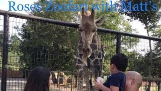 Matts Playtime. Roers Zoofari