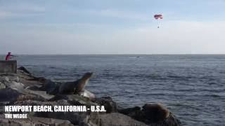 Newport Beach, California - Travel Tour 4K HD