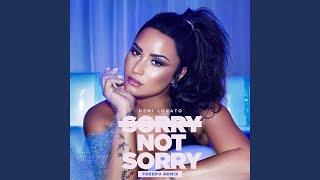Sorry not (freedo remix)