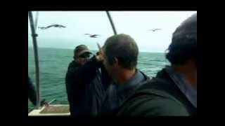 robson green great white shark dive on extreme fishing challenge