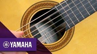 gitara klasyczna yamaha cg182c oraz cg182s - micha karbowski | guitars | yamaha music | polski
