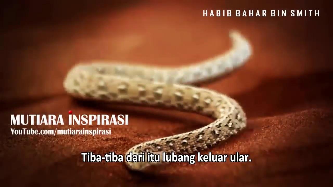 Kata Kata Motivasi Dari Para Sahabat Nabi   Anamyhusna Blog&39;s