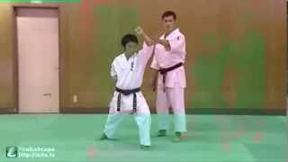 Jyu no Kata 1 什の型 その1