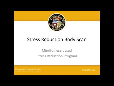 Stress Reduction Body Scan