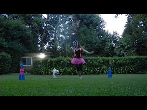 Mayu y Meli - Bienvenida - Jeites - Coreografía Dog Dancing