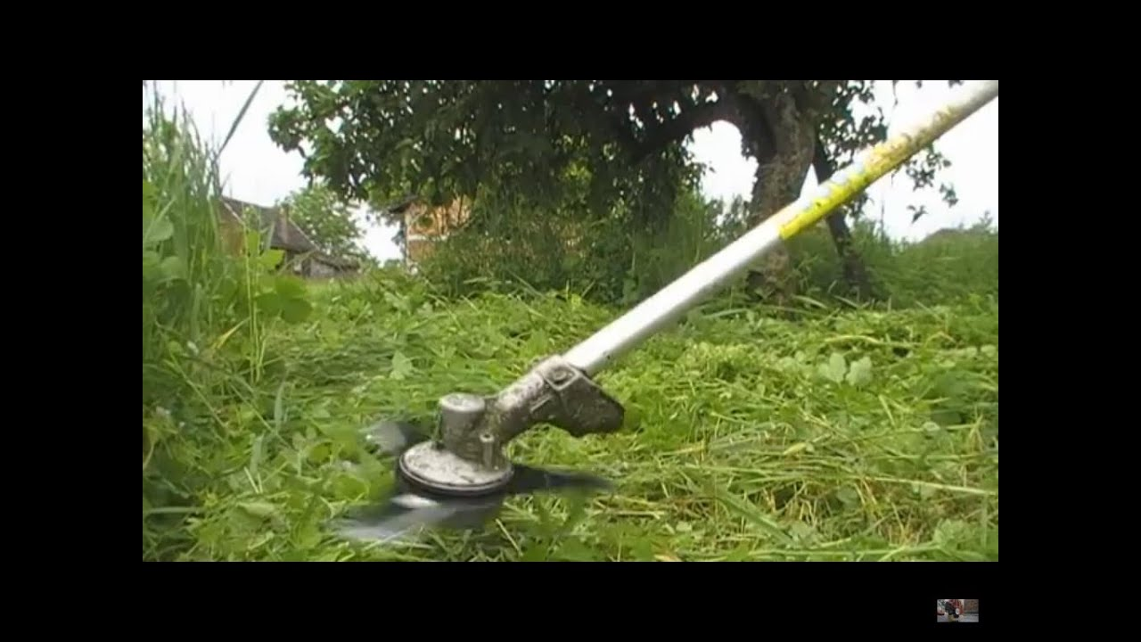 Using my stihl fs 85 brushcutter in high grass with the brush using my stihl fs 85 brushcutter in high grass with the brush knifeblade on pt 2 youtube greentooth Images