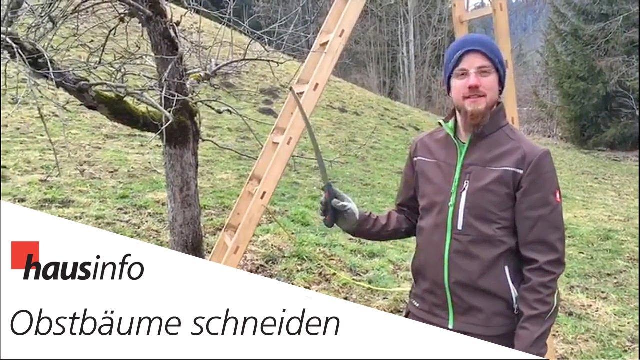 Obstbaume Richtig Schneiden Youtube