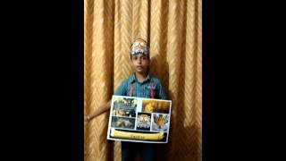 Kids Presentation on Extinction of Caspian Tigers