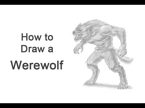 How to draw a werewolf youtube