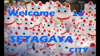 【世田谷区】プロモーションビデオ「Life is Entertainment SETAGAYA CITY」