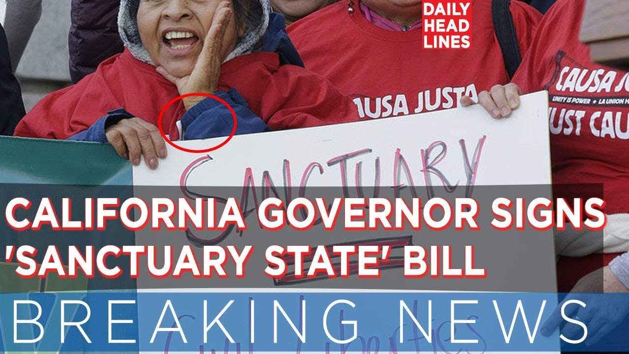 Image result for sanctuary state california