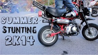 The 50cc summer 2014