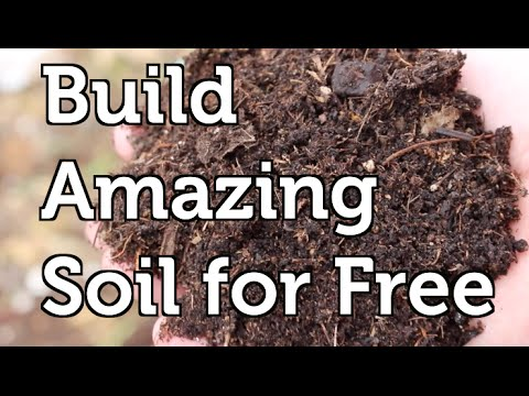 Build Amazing Fertile Garden Soil Using Free and Local Resources