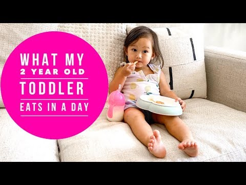WHAT MY 2 YEAR OLD TODDLER EATS IN A DAY | TODDLER FOOD IDEAS | 24 MONTH OLD TODDLER | FOOD DIARY