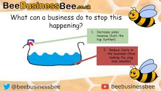 Cash Flow Forecasting Bee Business Bee