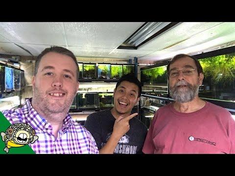Live With Gary Lange Rainbowfish Expert