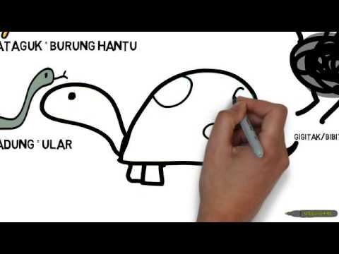 Ayuha Belajar Bahasa Banjar Siri  Akmal Binatang