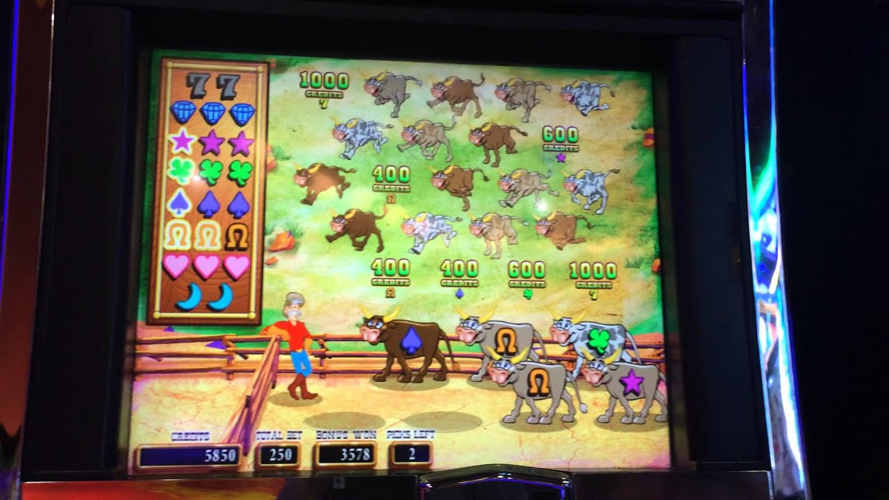 cow slot machine