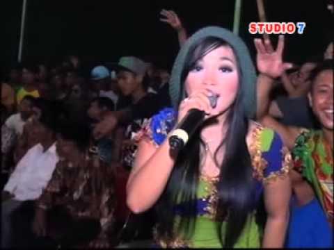 Bidadari Kesleo - Savana Dangdut Reggae