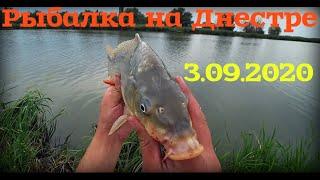 Пытались половить но что то пошло не так Рыбалка на реке Днестр 3 09 2020
