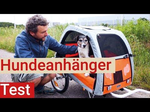 Hundefahrradanhänger im Test