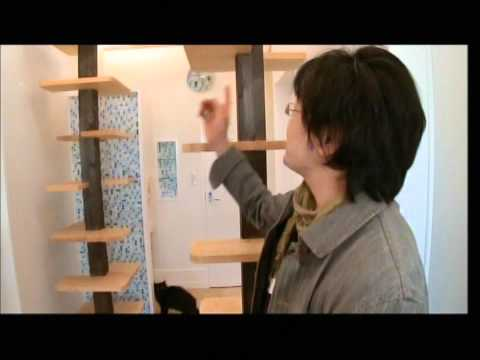 Keiji Hirose, Fauna+Design The Cats' House story 1 Travel Video
